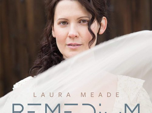 The Art Rock of Laura Meade